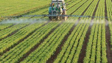 Photo of Saipem chiude l'accordo in Australia per uno stabilimento di fertilizzanti