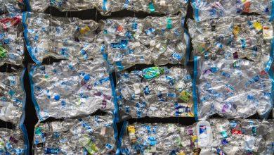 Photo of Amazon: impennata di acquisti ma anche di plastica
