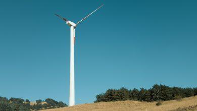 Photo of Obiettivo decarbonizzazione: cosa fare