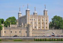 Photo of Sparita la regina dei corvi della Torre di Londra: si teme per il peggio