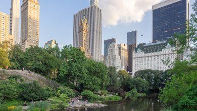 """Photo of """"Ora più che mai Central Park ha bisogno di voi"""", perdita da 10 milioni per il parco più famoso al mondo"""