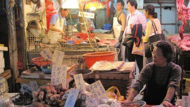 Photo of Il mondo aspetta ancora una spiegazione: il fallimento dell'inchiesta Oms a Wuhan