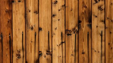 Photo of La Russia blocca l'export del legno verso l'Ue: industria del mobile danneggiata